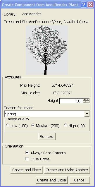 Create-Plant.jpg