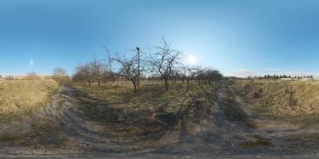 2021 Jul abandoned pathway.jpg