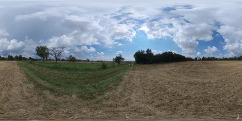 2021 Sep Newsletter Dry Hay Field.png