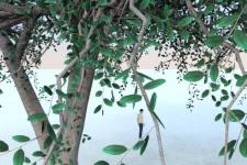 Tree-w-IRender.jpg