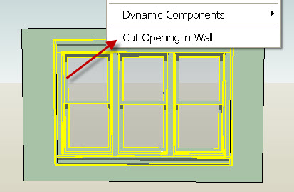 Cut-openng.jpg